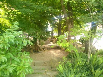 国泰寺庭園1.jpg